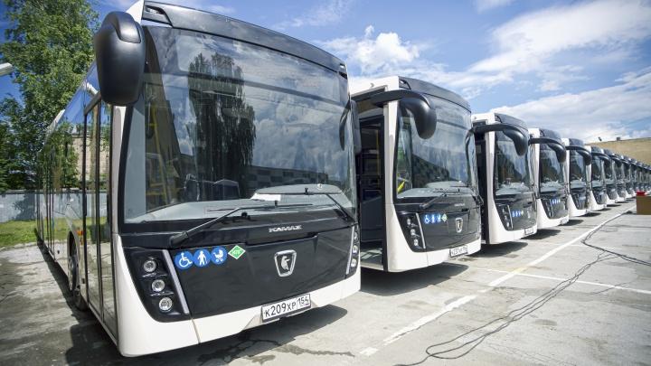 На маршруты Новосибирска выпустили 40 новых автобусов — разглядываем снимки с новыми машинами