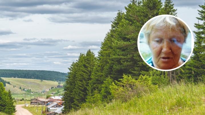 В Перми собирают добровольцев на поиски пенсионерки, уехавшей за ягодами