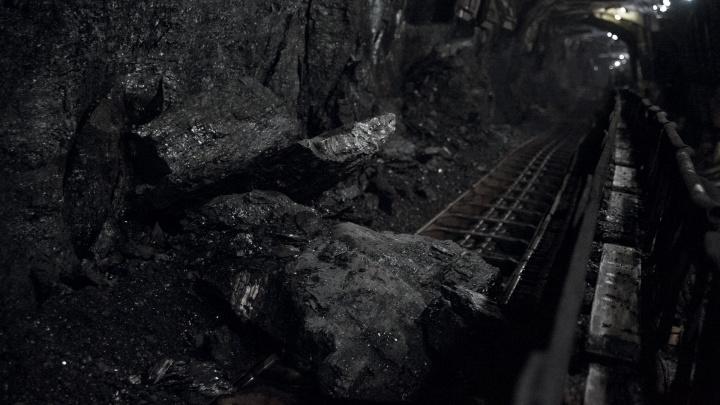 Профессор МГУ высказалась о кризисе в угольной отрасли Кузбасса и объяснила его причины