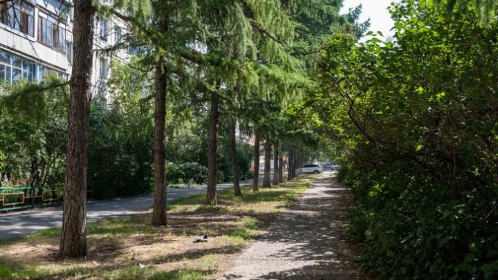 Пешеходный бульвар на Северо-Западе Челябинска продлят за 31,7 миллиона рублей