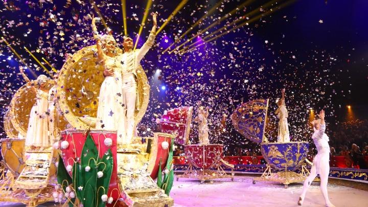 Еще один шаг к нормальной жизни: нижегородский цирк возобновляет свою работу