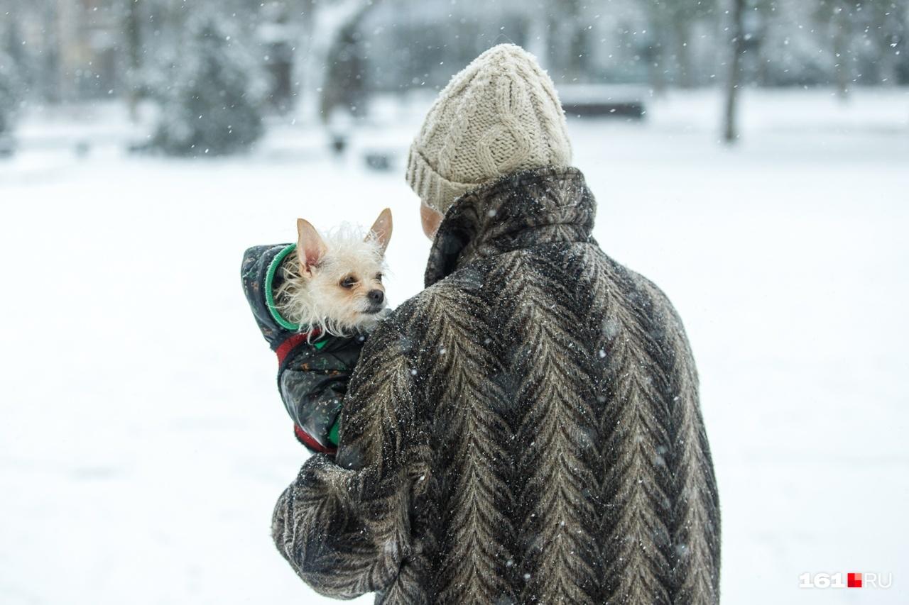 Несмотря на все проблемы, связанные с непогодой, люди все же радовались пушистому снегу