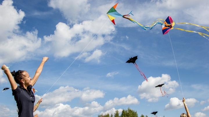На «Маёвке» в «Лесной заставе» устроят шоу воздушных змеев, караоке-баттл и мясной гриль-обед