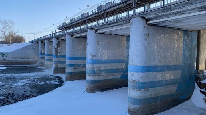 «Прогноз благоприятный»: Илья Винштейн рассказал, каким может быть паводок в Кургане