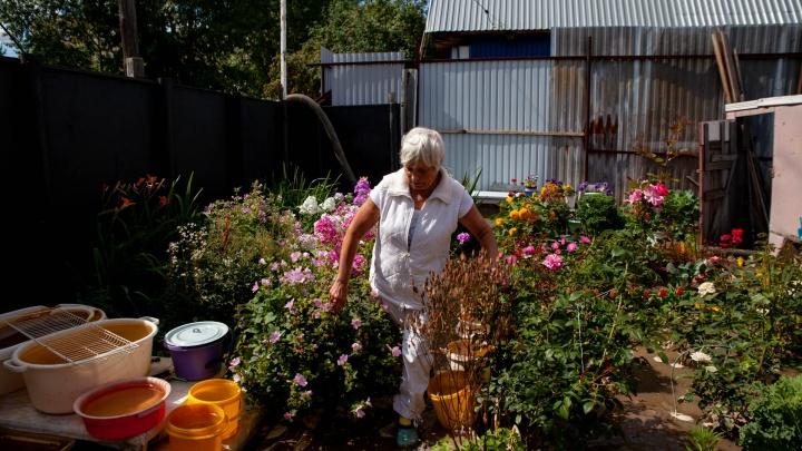 В частном секторе в Тюмени из-за утечки затопило огороды