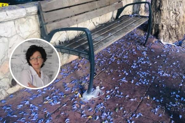 Елена Бобяк восторгается израильской природой и откровенно описывает ужас проживания в зоне военного конфликта