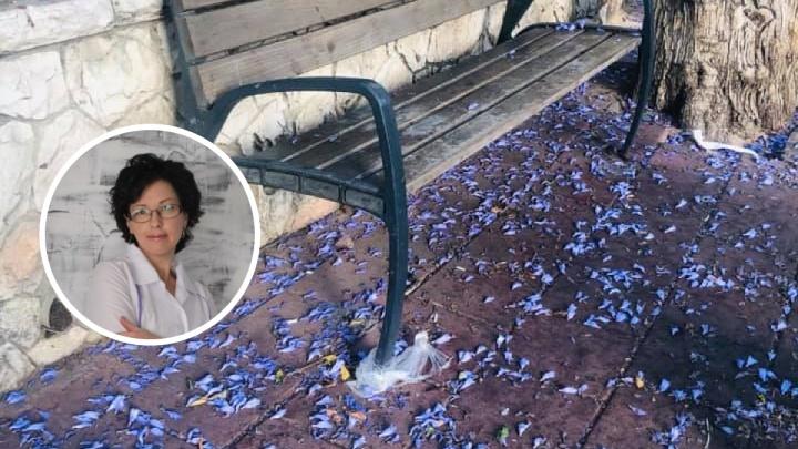 «В 300 метрах от нашего дома упала ракета»: откровенный рассказ бывшей сибирячки о бомбежках в Израиле