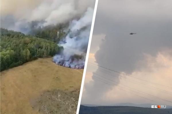 Огонь охватил площадь в 50 гектаров