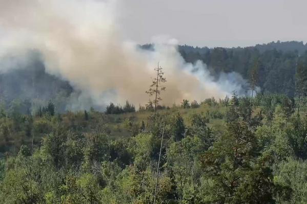 Пламя «съело» больше 152 гектаров леса
