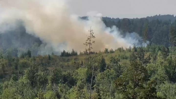 На тушение крупного лесного пожара в Тольятти направили самолет-амфибию из Магнитогорска