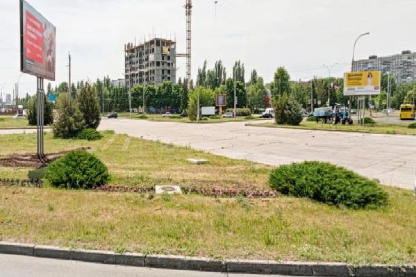 Насаждения на пересечении проспекта Степана Разина и улицы Свердлова