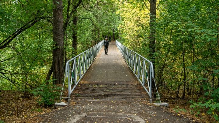 Ручей с шестью мостами: фотопутешествие по Сухому Логу, который горожане считают рекой, а власти не знают название