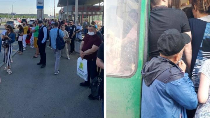 В автобусах в Академическом снова начались давки: в салонах не помещаются даже кондукторы