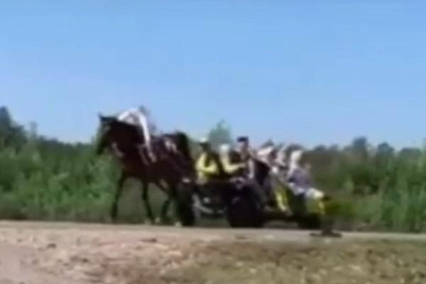 Пассажиру гужевой повозки оторвало стопу при столкновении с иномаркой в Башкирии