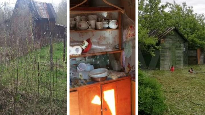 Дача за две зарплаты: пять самых дешевых вариантов загородной недвижимости в Ярославской области