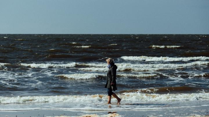 «Пляжей не будет даже в отлив»: климатолог дал прогноз, как глобальное потепление изменит Архангельск