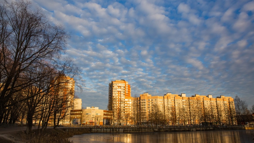 Город в городе: житель Брагино назвал плюсы и минусы самого густонаселенного района Ярославля