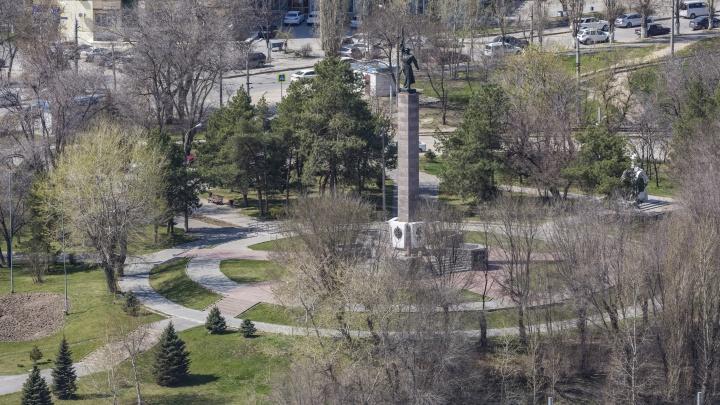 В Волгограде при реконструкции площади Чекистов вырубят 54 дерева и демонтируют километр гранитных бордюров