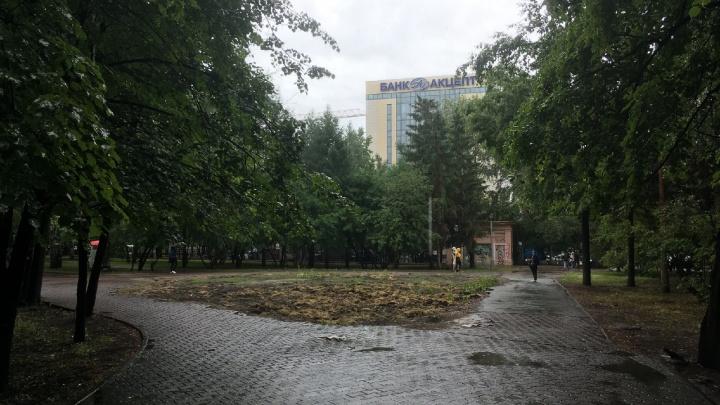В Новосибирске полмиллиона решили вложить в участок Первомайского сквера, где снесли кафе