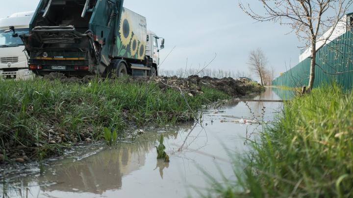Очередь за мусором: как белореченцы восстали против полигона ТКО