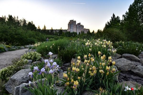 Ботанический сад ЧелГУ оставляет очень приятное впечатление. Но сейчас о другом...