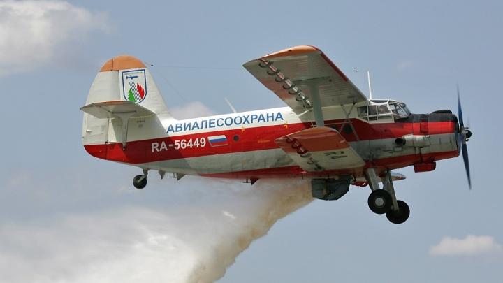 В Архангельской области пропал легкомоторный самолет. Он патрулировал лес для защиты от пожара