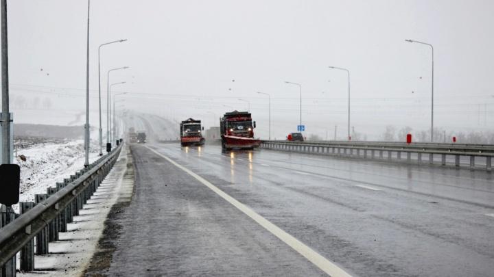 Гололед, туман и сильный ветер: Волгоградскую область ждет очередное испытание погодой