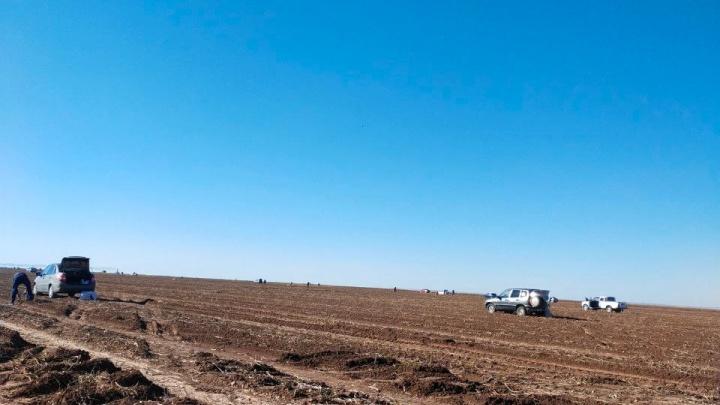 После такого чиновникам и депутатам пора в отставку: фермер — о диких очередях за картошкой в Волгограде