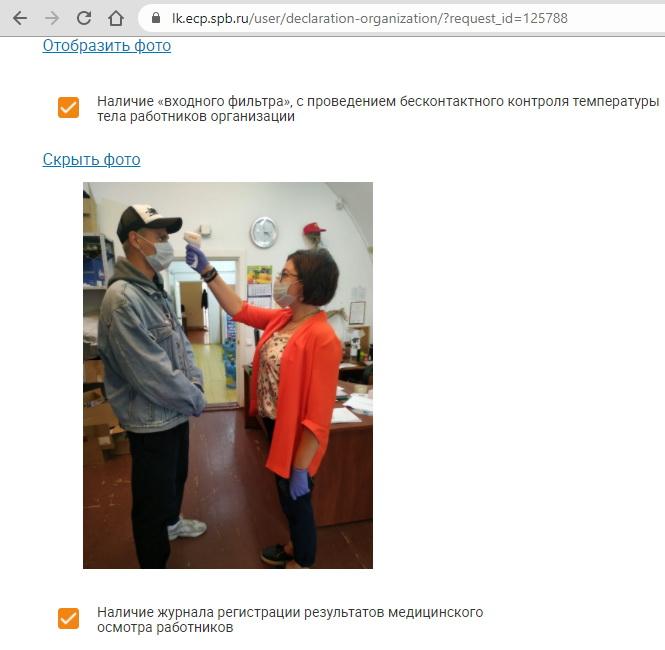 Работающие в Петропавловке фирмы отправляли в Смольный декларации с идентичными фото.