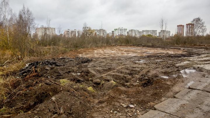 Грязь и уныние: как выглядит «Озерная гривка», из которого обещали сделать сказочный парк
