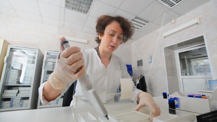 В Екатеринбурге будут принимать клещей на анализ в воскресенье