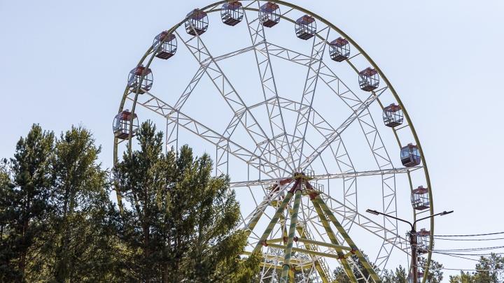 «Жюри отметило антиковидный тренд»: колесо обозрения в «Роевом Ручье» стало «Открытием года» в России