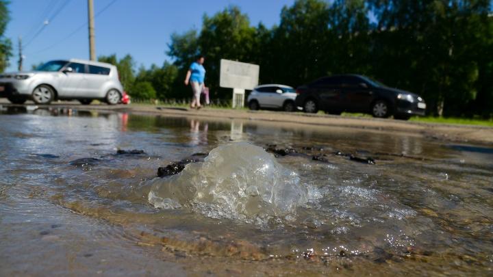 Фонтан из-под земли: почему в Архангельске появилась большая лужа на проспекте Ломоносова