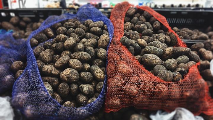 В Курганской области продолжают дешеветь картофель и морковь