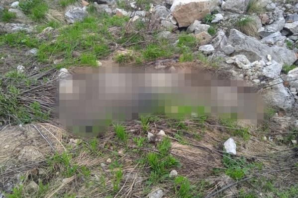 Следователи не могут показывать тело погибшего туриста