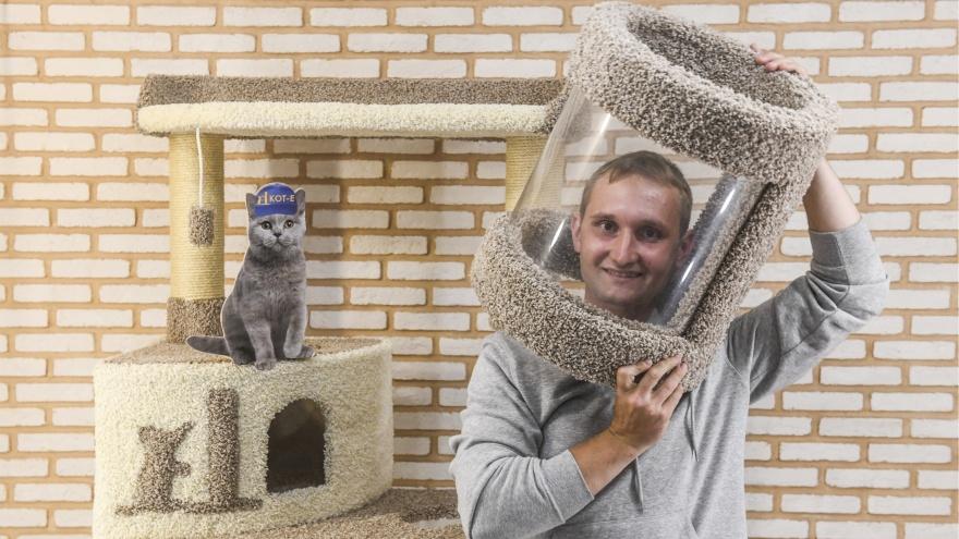 Бизнес на кончиках когтей. Как кошка помогла паре из Екатеринбурга открыть свое дело