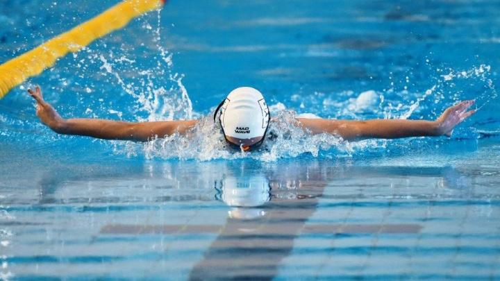 В Перми пройдет первенство Пермского края по плаванию