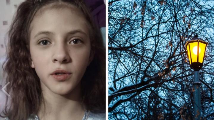 Под Новосибирском пропала 11-летняя девочка. Она гуляла с мамой
