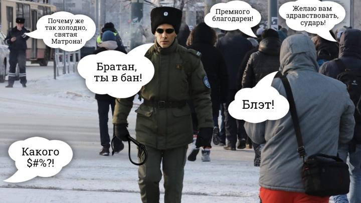 В Челябинске с нецензурной лексикой в интернете начали бороться киберказаки