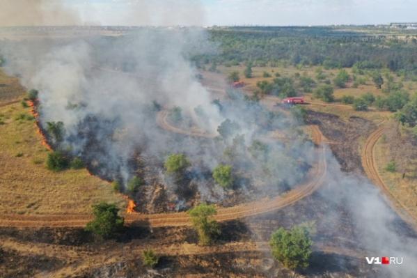 Ежесуточно в регионе регистрируется 15 и больше возгораний