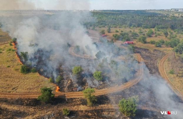 До 15 возгораний в сутки: в Волгоградской области губернатор ввел особый противопожарный режим