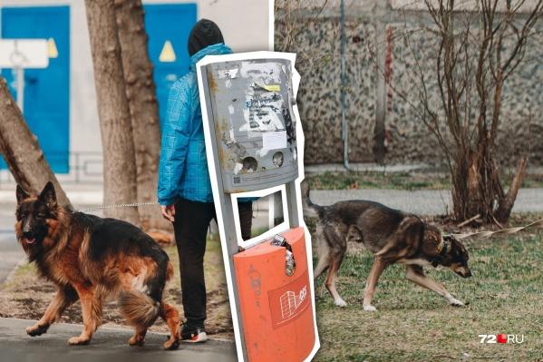Многие тюменцы держат дома собак, выгуливать их принято на улице, но далеко не все убирают за своими питомцами
