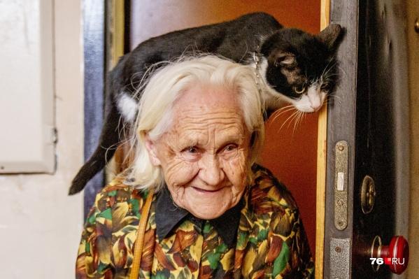 Бабушка и кошка неразлучны