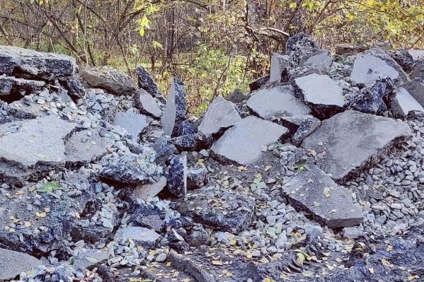 Новосибирец предположил, что асфальт в лесок свозят с улицы Волочаевской