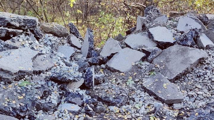 Новосибирец обнаружил свалку битого асфальта в зеленой зоне у реки