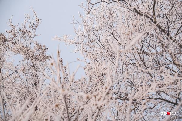 Многие уже устали от морозов, но, похоже, они закончатся не скоро