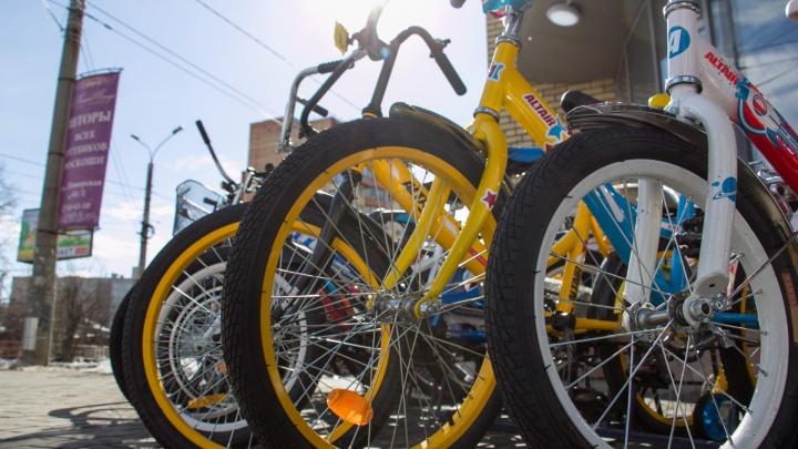 Волгоградские водители обругали велосипедистов-дальтоников