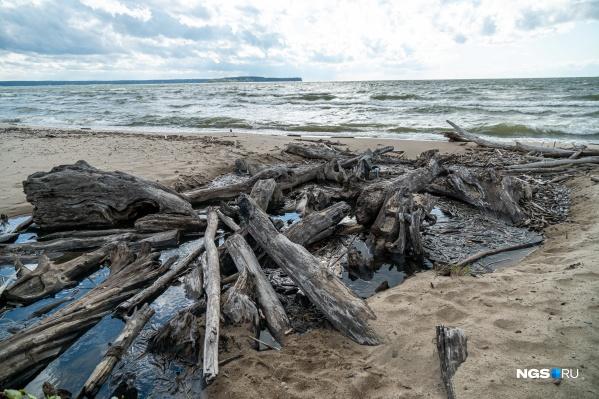 Зырянка — единственная городская речка, которая впадает в море, пусть и в Обское