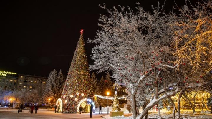 Главную елку в центре Новосибирска начнут демонтировать 31 января