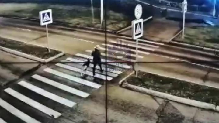 Таксистка-лихачка сбила пенсионера с собакой на переходе